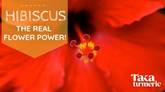 HIBISCUS HEALING: THE REAL FLOWER POWER!