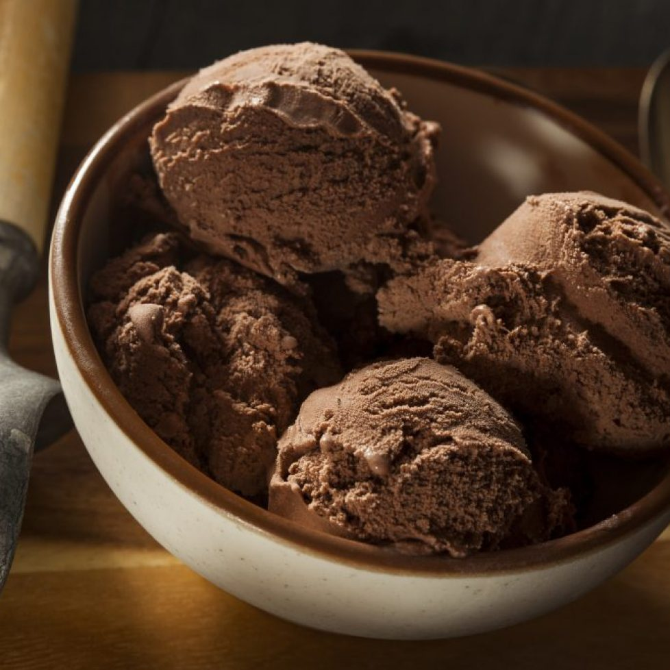 Chocolate Dairy-Free Plant-Based Ice Cream Powder Base