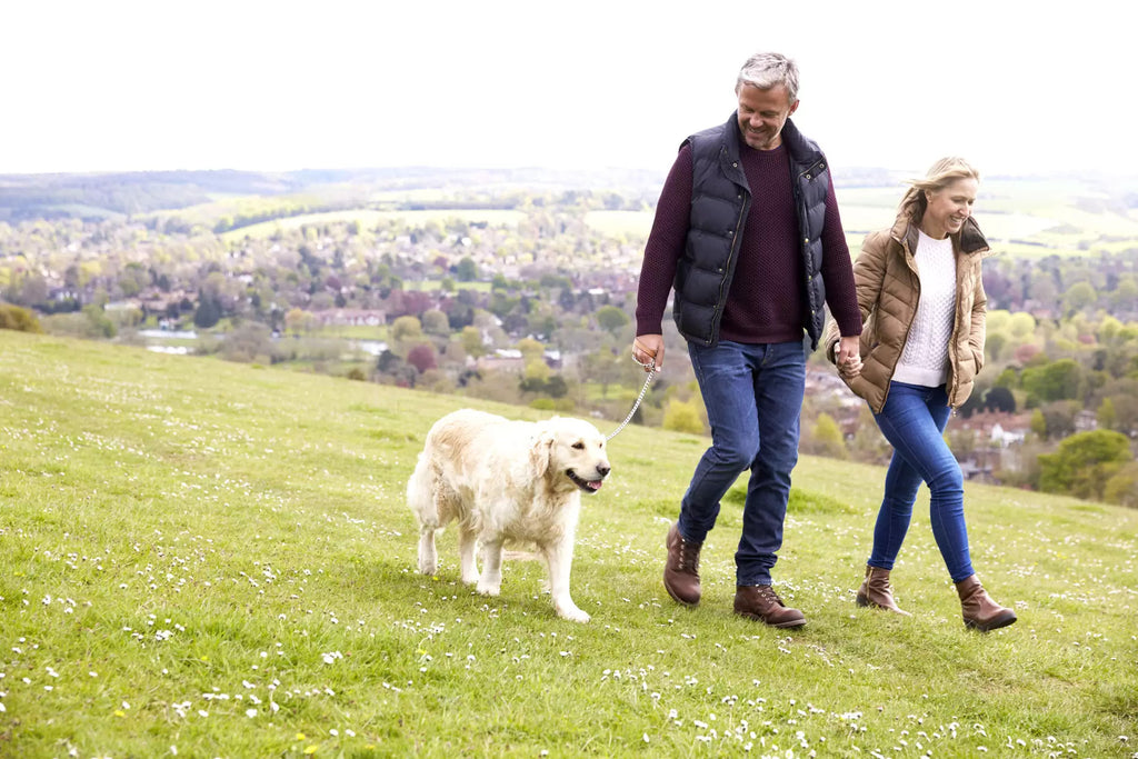 DISCOVER 6 BENEFITS OF WALKING