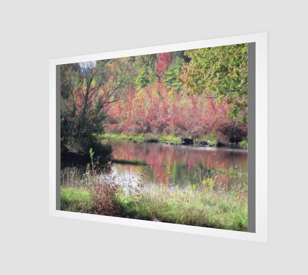 Pond in Fall Art Print