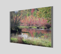 Pond in Fall Poster