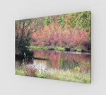 Pond in Fall on Canvas