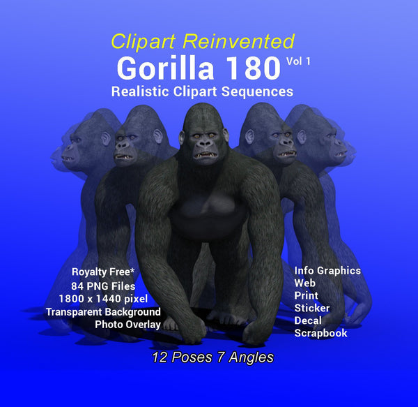 Gorilla 180 Realistic Clipart Vol 1 of 2, Royality Free Infographic Clipart, Decal, Sticker, Web, Gorilla Advertising, Gorilla Print, School
