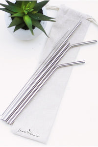 Silver Zero Waste Metal Straw Set