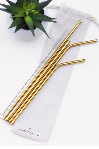 Gold Zero Waste Metal Straw Set
