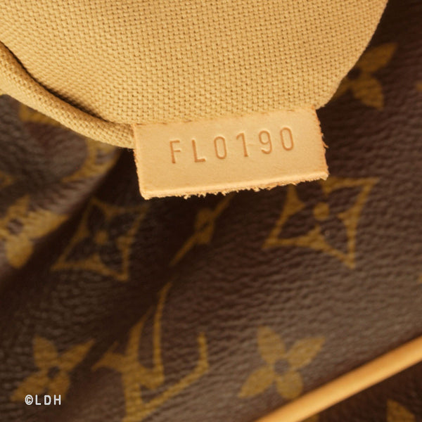Louis Vuitton Delightfull GM (Authentic Pre Owned)
