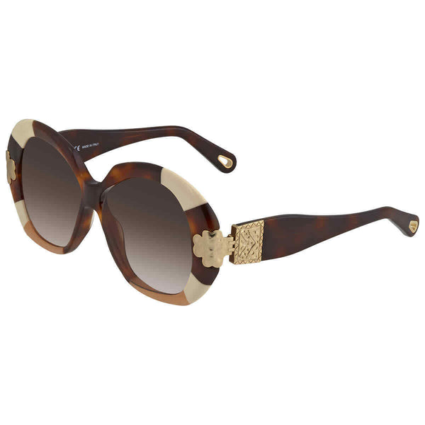 Chloe Havana Patchwork Ladies Sunglasses CE743S24354 CE743S24354