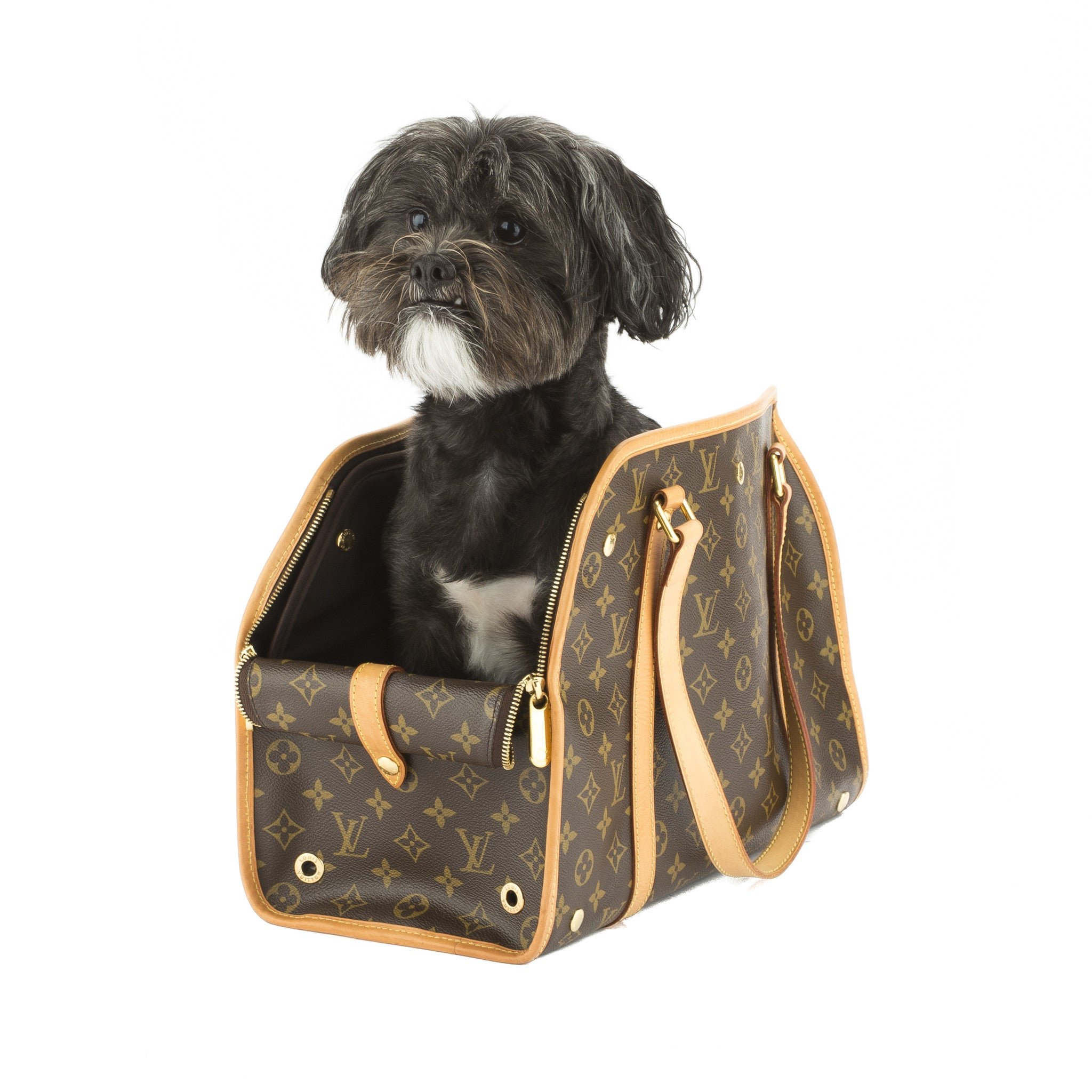 8682a73320b9 Louis Vuitton Monogram Sac Baxter GM Dog Pet Carrier (Pre Owned) - 2563002