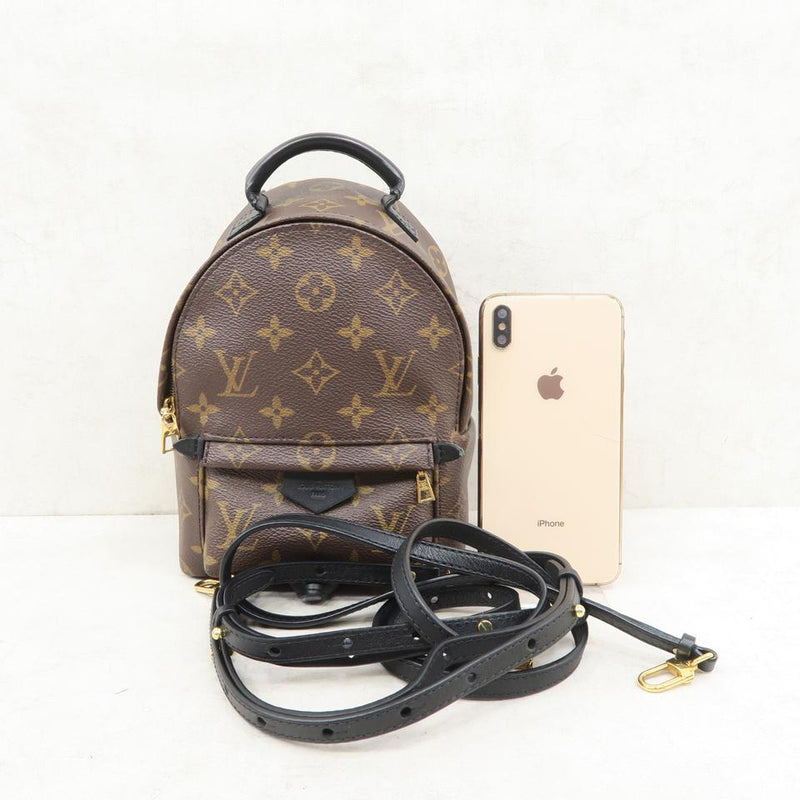 Louis Vuitton Palm Springs Mini Brown Monogram Canvas Backpack