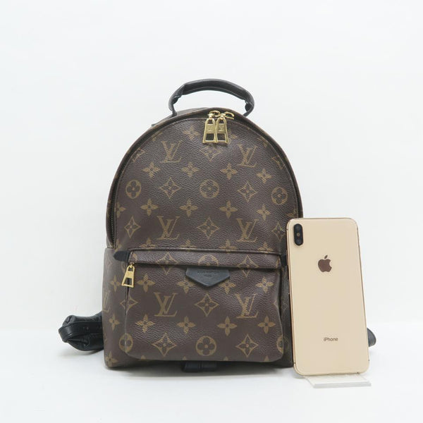 Louis Vuitton Plam Springs Pm Monogram Brown Canvas Backpack