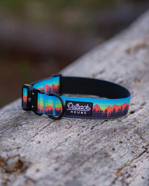 Orange Mountain Dog Collar