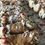 Holly Jolly Protein Cannoli