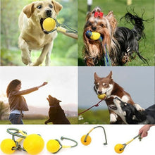 Load image into Gallery viewer, Indestructible Chewy Dog Ball Toy