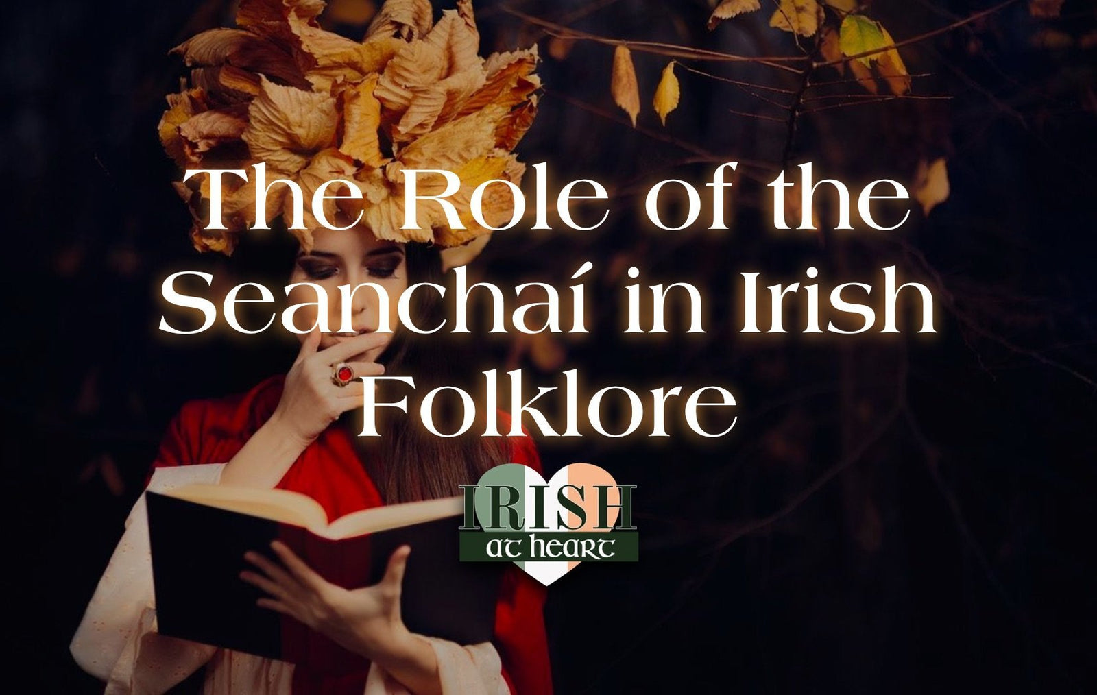The Role of the Seanchaí in Irish Folklore