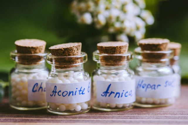 Vancouver Professional Holistic Services   Vancouver Homeopathy Services