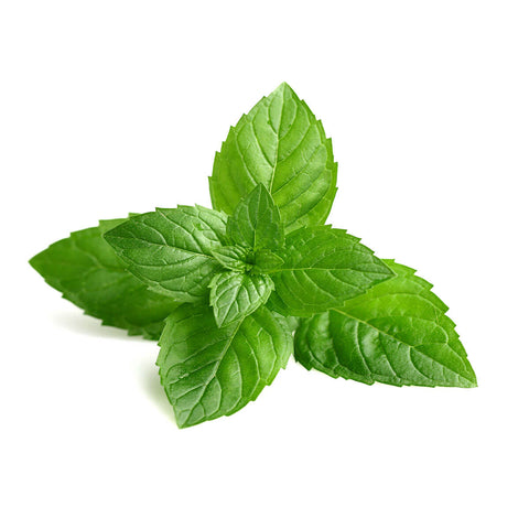 Peppermint - You vape