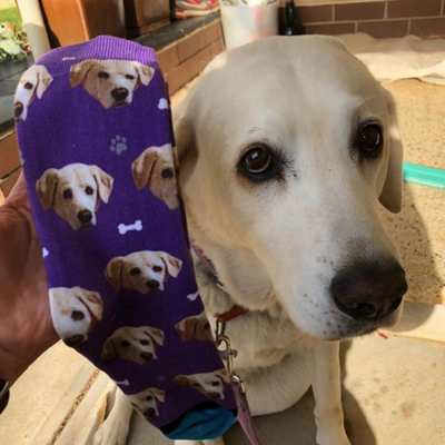 Custom Face Pet Socks - Stray Faces