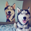 Custom Pet Portrait Blanket | Pet Portrait UK