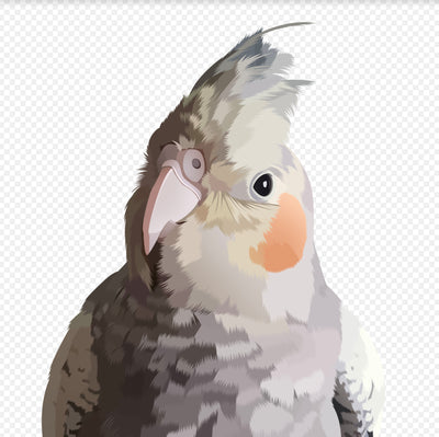 Custom Digital Bird Portrait - Stray Faces