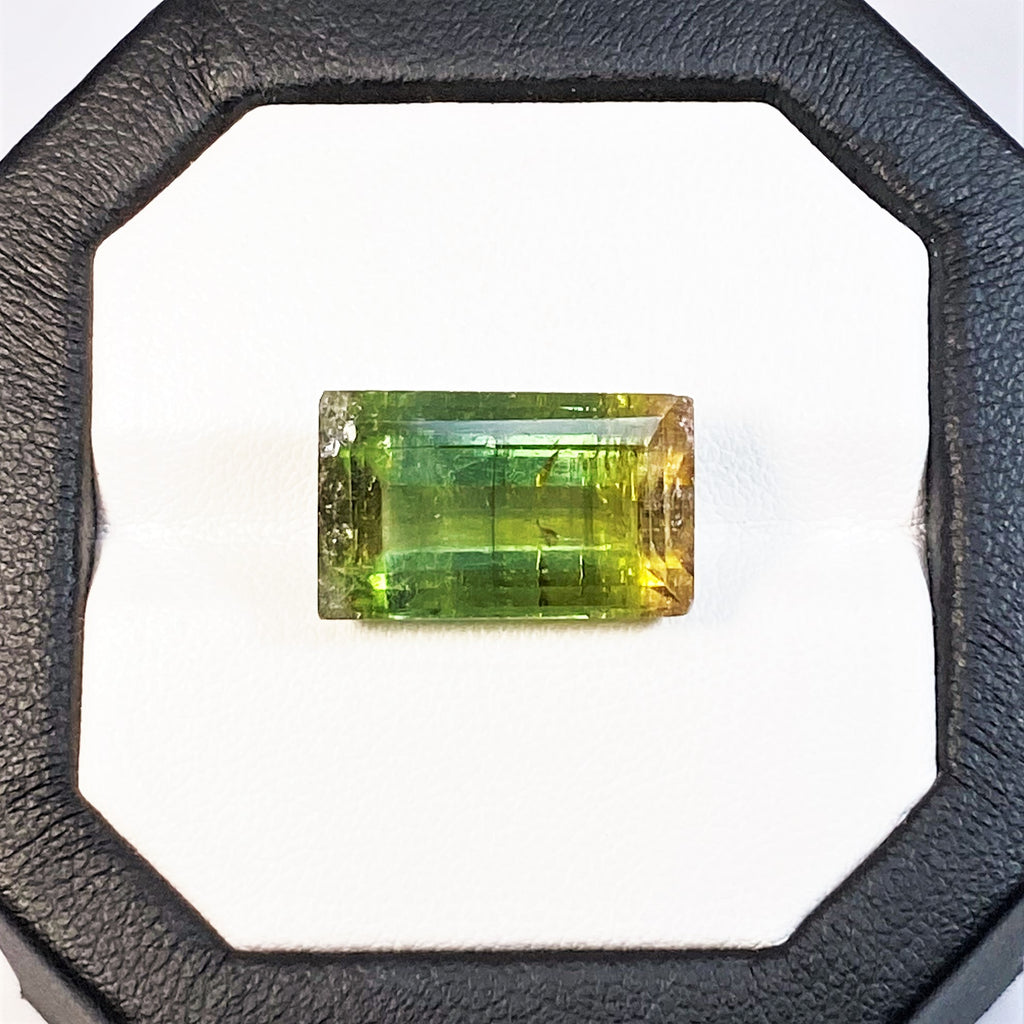 Natural Bi-Color Tourmaline - 15.36 ct.