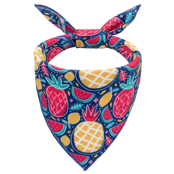 Fruit Fiesta Dog Bandana - Canine Compassion Bandanas