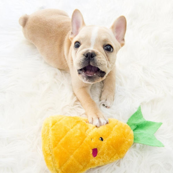 Pineapple Plush Dog Toy - Canine Compassion Bandanas