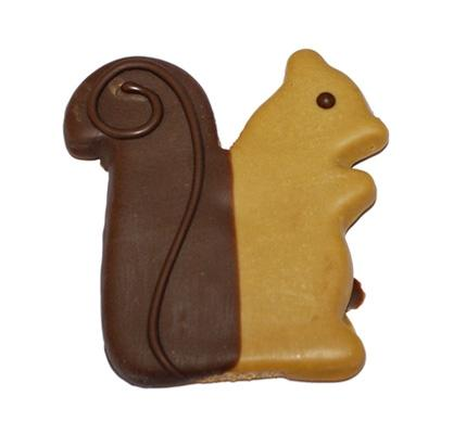 Squirrel Decorated Dog Treat - Canine Compassion Bandanas