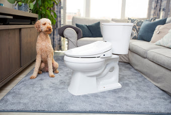 How Does a Bidet Work?