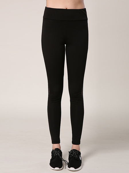 Paneled Casual Solid Breathable Sports Legging - kattystory