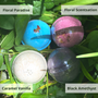 Bath Bombs (Set of 2)