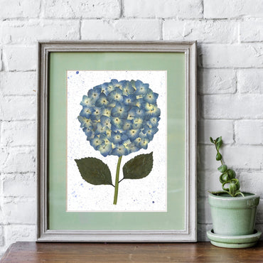 Made-to-Order Hydrangea Original