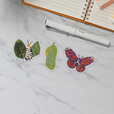 Metamorphosis Sticker Set
