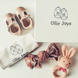 The Princess baby gift box - Ollie Jays