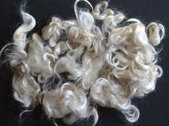 Curly Raw Wool - Romney Sheep