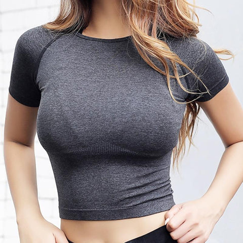 Image of Lush Quick-Dry Seamless Sports Crop Top