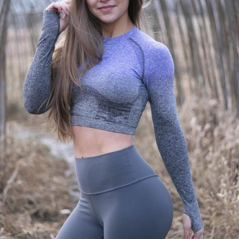 Ombre Stylish Long Sleeve Seamless Sports Crop Top