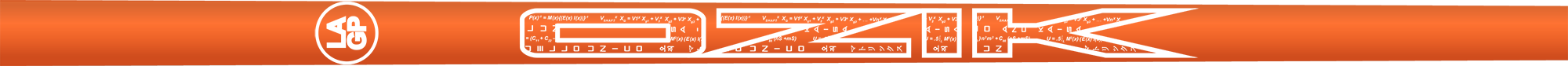 Ozik White Tie: Neon Orange White Satin - Wood 60 R
