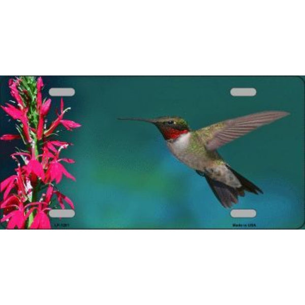 Humming Bird Novelty Vanity Metal License Plate Tag Sign