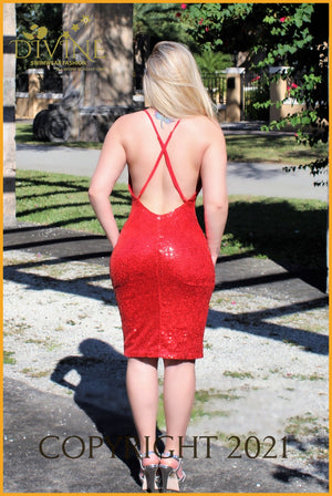 Life In Red Dress Small / Trending