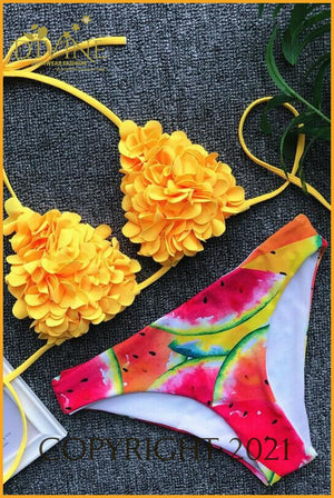 Fashion Divine Bikini Set (Red)