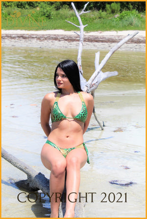 Queen Of Green Bikini Set(Green) Set