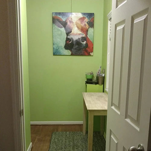 Customer project of hallway wall painted in frosted green TemPaint wallpaper paint.