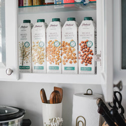 Elmhurst's shelf-stable plant milk collection