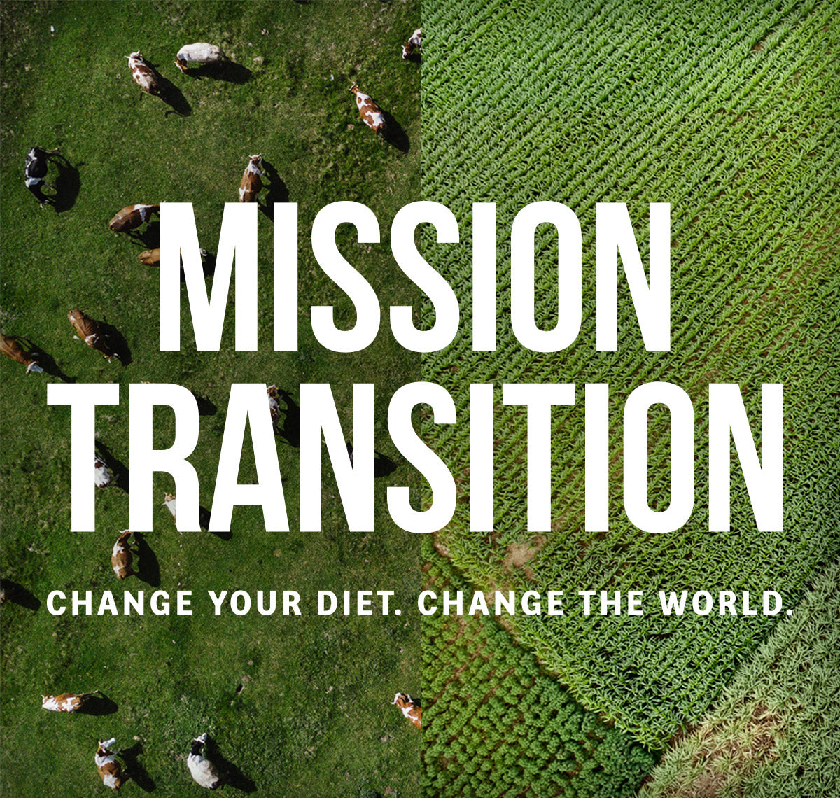 Mission Transition Header Mobile