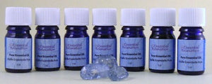 Pure Essential Oil - Camphor - Essential Relaxation