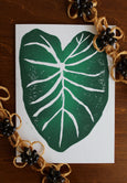 Taro Leaf Notecard