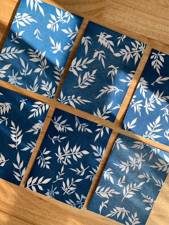Botanical Cyanotype Prints