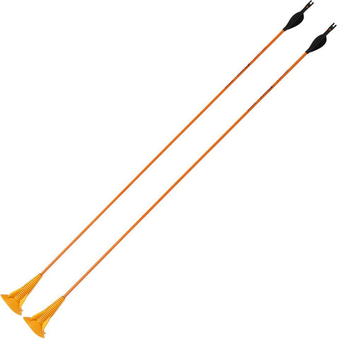 GEOLOGIC - Discosoft Suction Cap Archery Arrows X2