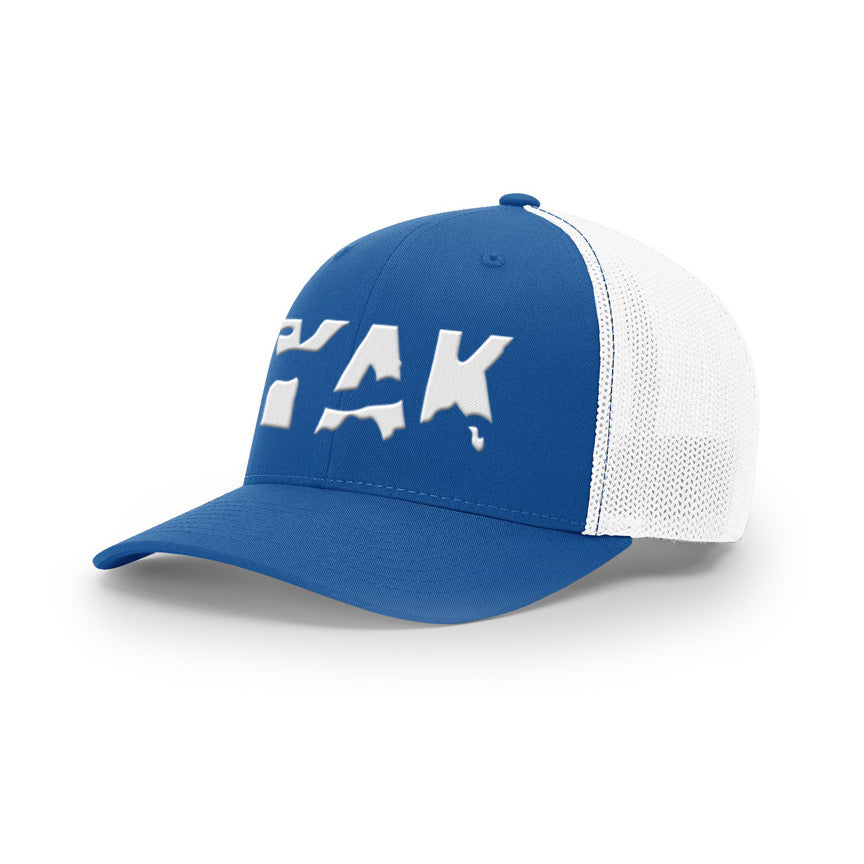 YAK Blue/white mesh fitted