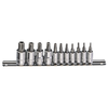 11PC 1/4 & 3/8DR PENTACLE BIT